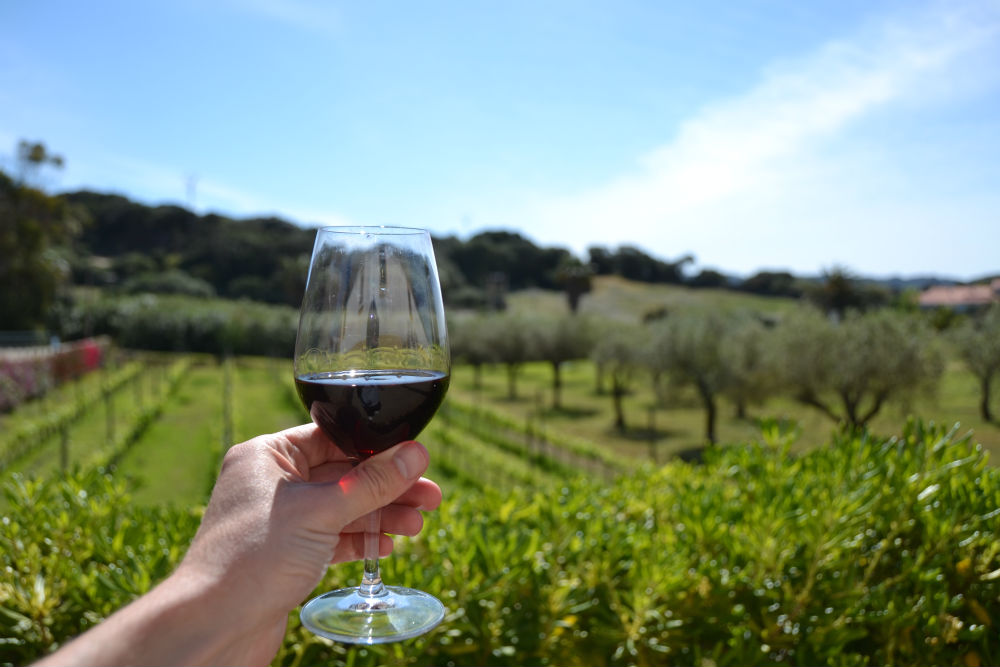Agrotourism in Menorca