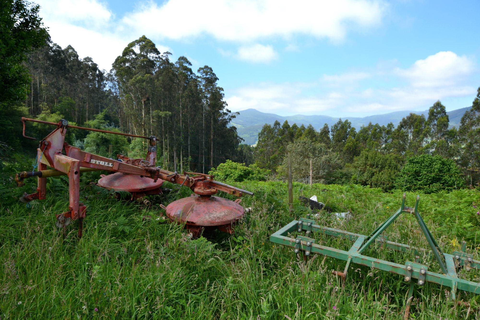 Galicia farmland