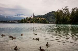Lake-Bled-(3)